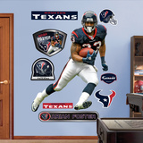 Arian Foster Wall Decal