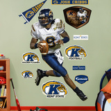 Josh Cribbs Kent State Wall Decal