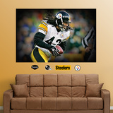 Troy Polamalu Closeup Mural Wall Decal