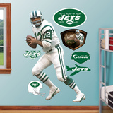 Joe Namath Wall Decal
