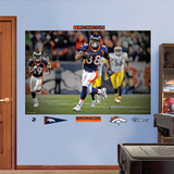 Demaryius Thomas OT TD Mural Wall Decal