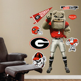 Georgia Bulldog Wall Decal