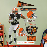 Joe Haden Wall Decal