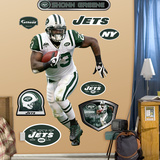 Shonn Greene   Wall Decal