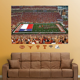 Texas Darrell K. Royal Stadium mural  Texas Flag Wall Decal