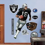 Jim Plunkett Wall Decal