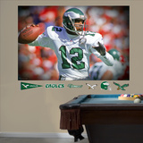 Randall Cunningham Mural Wall Decal