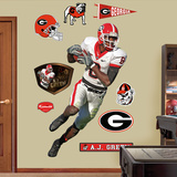 A.J. Green Georgia   Wall Decal