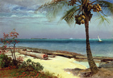 Tropical Coast Wall Decal by Albert Bierstadt