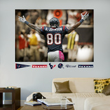 Andre Johnson Celebration Mural Wall Decal