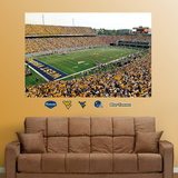 West Virginia Stadium Mural Wall Decal