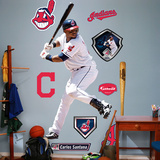 Carlos Santana Wall Decal