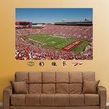 Florida State Stadium Mural Wall Decal