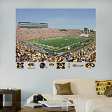 Missouri Stadium Mural Wall Decal