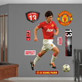 Park Ji Sung Wall Decal
