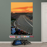 Darlington Raceway Mural Wall Decal