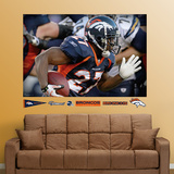 Knowshon Moreno Mural Wall Decal
