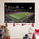 Stanford Stadium Mural Wall Decal