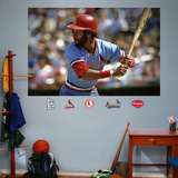 Ozzie Smith Mural   Wall Decal