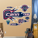 Boston Cannons Logo   Wall Decal