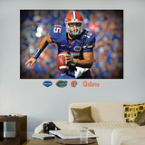 Tim Tebow Florida Mural Wall Decal