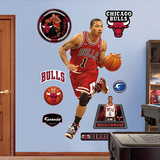 Derrick Rose Rookie of the Year Wall Decal