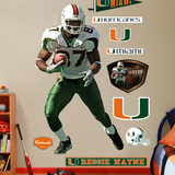Reggie Wayne Miami Wall Decal Wall Decal