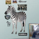 Generic Zebra Wall Decal