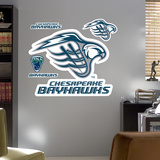 Chesapeake Bayhawks Logo   Wall Decal