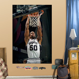 David Robinson Mural Wall Decal