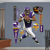 Donovan McNabb 2011 Wall Decal