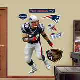 Tedy Bruschi   Wall Decal