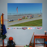 Talladega Superspeedway Mural Wall Decal