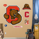 Cornell University Logo Wall Decal