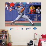 Nolan Ryan Rangers Mural   Wall Decal
