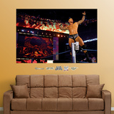 Randy Orton Mural Wall Decal