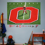 Ohio State Brutus Mural Wall Decal