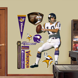 Fran Tarkenton Wall Decal