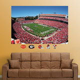 Georgia Stadium Mural Wall Decal