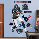 Andre Johnson Wall Decal