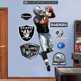 Darrius Heyward-Bey Wall Decal