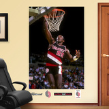 Clyde Drexler Mural Wall Decal