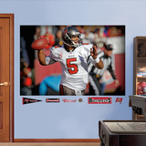 Josh Freeman Mural Wall Decal
