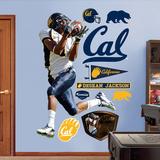 DeSean Jackson Cal Wall Decal