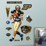 Drew Brees Purdue 2010 Wall Decal