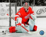 Jimmy Howard 2011-12 Spotlight Action Photo