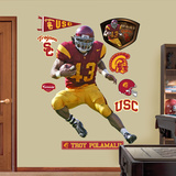 Troy Polamalu USC Wall Decal