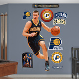 Tyler Hansbrough 2012 Wall Decal