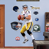 Mark Sanchez AFL Wall Decal