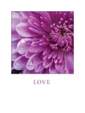 Love Prints by Erin Berzel